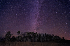 This Sky Goes to Eleven (Fort Photo) Tags: longexposure sky nature forest way skyscape stars landscape nightscape space science andromeda galaxy astrophotography m31 astronomy wyoming aspen milky wy milkyway 2012a