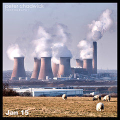 FF Power {15-366} (PeterChad) Tags: bridge tower industry toxic danger contrast industrial power sheep farm heat environment coal furnace livestock warming mersey placid global globalwarming coolingtower cooling runcorn merseyside widnes carbonfootprint fidlersferry