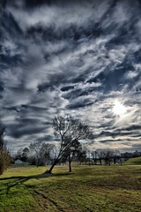 Leaning Tree #1 (justpics2007) Tags: sky clouds littlerock arkansas sigma1020mm dphdr canont2i