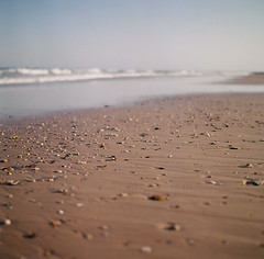 s u m m e r ({JO}) Tags: ocean sea summer sky shells holiday film beach mediumformat is sand waves used sunshinecoast alot coolum kodak400vc hasselblad500cm cloudcontrol pointarkwright therepeatbutton