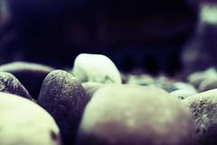 Pebbles (Eric Majoor) Tags: beach nature rock canon 28mm natuur 450 rhenen steen  dierentuin stenen pebbels   canon28mm 28mm18 450d canon450 canon450d
