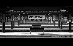 Sydney Central Train Station, Sydney, NSW, Australia (ILYA GENKIN / GENKIN.ORG) Tags: architecture australia australian blackandwhite bw cbd center central centralstation centraltrainstation city exterior monochrome newsouthwales nsw oceania outdoor outside rail railroad railway road station sydney tourism tourist touristattraction train trainstation transport transportation travel urban