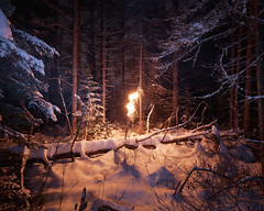 (Benoit.P) Tags: wood winter light shadow wild white inspiration snow canada color art nature forest square landscape photography james george bright benoit quebec montreal fineart dream poetic 8x10 clean vision lanscape alternative rousse paille turrell instalation ecologic minimaliste ecologie troisrivires fames sooc benoitp