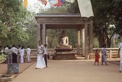 Samadhi Buddha Statue Samadhi Buddha Larry Antwerp