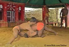 Kushti at Tulsi Ghat Akhara, Varanasi (Sekitar) Tags: india man men temple wrestling varanasi hindu tulsi ghat akhara kushti hamuman wresler earthasia