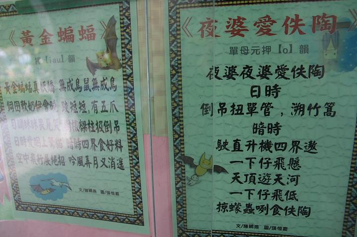 雲林水林黃金蝙蝠生態館(誠正國小)0032