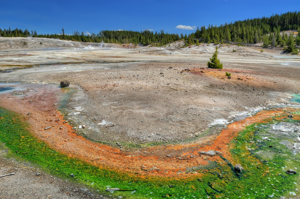 Bicolor hot spring in Yellowstone National Park