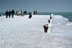 IMGP9571 (sinedie_sd) Tags: blue winter sea snow cold ice mare wind neve inverno zima freddo bora trieste ghiaccio