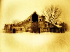 A Winter Memory (Dave Linscheid) Tags: winter usa snow texture abandoned minnesota barn rural country watonwancounty allxpressus tatot magicunicornverybest magicunicornmasterpiece blinkagain
