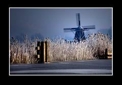 Landschap (Theo Kelderman) Tags: holland haarlem canon sneeuw nederland riet landschap ringvaart schalkwijk ijs dukdalf rijp molendehommel theokeldermanphotography verenigdepolders zaterdag4feb2012