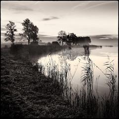 Pond (warmianaturalnie) Tags: bw white black water square landscape pond poland polska woda warmia staw 2011 krajobraz