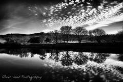 Reflecting Trees (Oliver Wood Photography) Tags: cheshire reservoir bottoms langley blackdiamond macclesfield flickraward