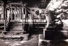 Mountain Life - Shrine - HONDA Takeshi ???