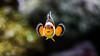Clownfish (marccrowther) Tags: fish aquarium nikon marine nemo bokeh clownfish fishtank anemonefish saltwater 105mm marinefish amphiprioninae nikon105mmf28 105mmf28gvrmicro ocellarisclownfish d7100 falseperculaclownfish explorewinnersoftheworld commonclownfish nikond7100