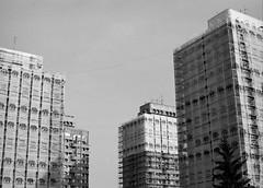 City of Elephants (p2-r2) Tags: city houses sky blackandwhite elephant film rollei skyscraper nikon poland facades retro covered scaffold 100 f3 wroclaw f3hp nikkor50mmf12ais