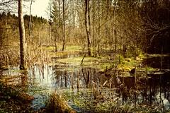 skrylle-5 (HB Jansson) Tags: lund water landscape skne sweden skrylle