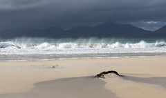 Brooding sky (Donard850) Tags: sea sky seaweed beach contrast scotland sand harris breakingwave luskentyre
