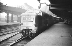EE/BR Class 55 Deltic No. D9019 (55019) at Newcastle Central Station (The Border Reiver) Tags: 1965 trainspotter deltic englishelectric class55 newcastlestation 55019 d9019 royalhighlandfusilier