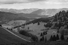 where I live ... Black Forest, Germany (Kim S. Landgraf) Tags: blackandwhite germany landscape kim 40mm schwarzwald blackforest omd kimlandgraf