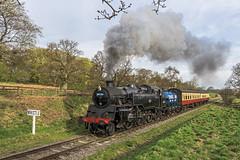 Dairy Local (4486Merlin) Tags: england europe unitedkingdom transport steam northeast railways northyorkshire gbr northyorkshiremoorsrailway 63a heritagerailways moorgates exbr brstd4mt264t mattfishercharter 8012680072