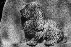Dog (michael_hamburg69) Tags: friedhof dog cemetery germany deutschland hamburg relief hund grabstein ohlsdorf grabmal ohlsdorferfriedhof gottesacker hildegardvonstauss grabmalstauss