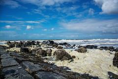 DSC_1046 (Roel Bloemen) Tags: sea mer beach strand rocks north noordzee zee du plage nord golfbreker