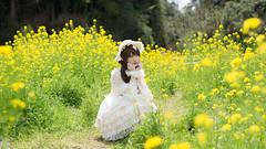 DSC_9438-2 (nana_tsuki) Tags: