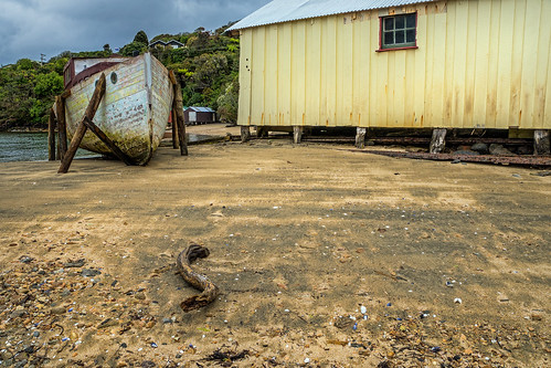 boat at golden bay - stewart island, NZ 2