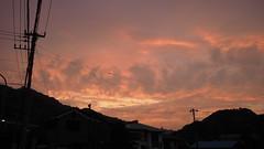 (backyard822) Tags: sky cloud twilight