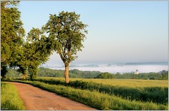 Paysage de Puisaye-Forterre (Office de Tourisme Portes de Puisaye-Forterre) Tags: burgundy bourgogne tourisme bourg yonne puisaye forterre bourgognebuissonière