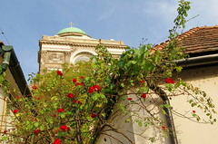 (elinor04 thanks for 24,000,000+ views!) Tags: old roof roses detail building architecture town hungary basilica hill cupola dome esztergom