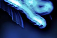 Deepsea Tortoise (Sebastian B.B.) Tags: blue red music orange white abstract black hot cold ice yellow dark aperture nikon warm turquoise teal cyan software plugin visual abstrakt topaz adjust topazlabs d7000