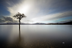 Old Ground!- # Explore 192 - Dec 10th, 2011 (RusseII Lees) Tags: winter lake tree landscape bay scotland long exposure russell sony extreme pebbles nd loch lomond lees stirlingshire balmaha rowardennan milarrochy a580 milarochy