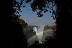 (Jordy B) Tags: river eau falls zimbabwe arcenciel chutes fleuve afrique watter rainbowfalls zambie mosioatunya zambze fumequigronde