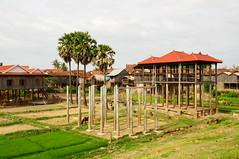 Cambodia (Ouestef) Tags: travelling cycling cambodia phnompenh siemreap angkor wat mekong battambang cycletouring kampongcham floatingvillages outforaspin