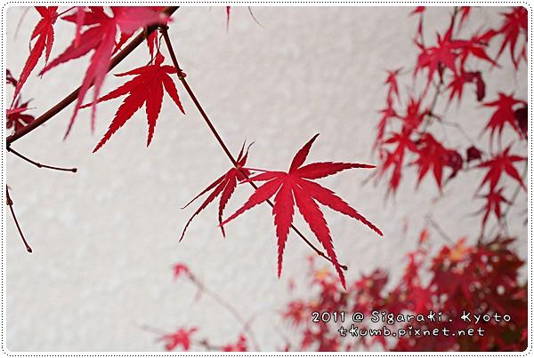 陶藝之森下 (12).jpg