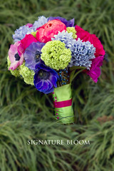 San Jose Floral Designer, Blue & Green Bridal Bouquet (Signature Bloom) Tags: pictures flowers blue wedding decorations flower green floral rose for bride design purple designer events sanjose images anemone designs florist vendor siliconvalley bouquet weddings bridal decor peninsula southbay ideas hyacinth weddingflowers bouquets weddingphotos lightblue hotpink viburnum floraldesign sanjoseca florists beautifulflowers specialevents weddingideas bridalflowers weddingdecorations floraldesigner flowerdesign 95120 95121 95119 weddingflorist weddingfloral greenbouquets colorfulbouquets weddingvendor bluebouquets weddingbouquetflowers blueandgreenwedding privetberries flowersforwedding sanjoseflorist springbouquets sanjoseweddingflowers signaturebloom wwwsignaturebloomcom sanjoseweddingflorist bridalflorist weddingfloristsanjoseca