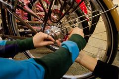 IMG_4354 (silverlinedwinnebago) Tags: test bike lights danielle run rei challenge biomimicry swapna santigie