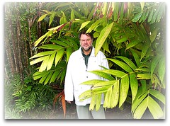 ~~ Hilo, Hawaii # 2 ~~ (TravelsThruTheUniverse) Tags: tropicalplants hilohawaii tropicalgardens tropicalfoliage thebigislandofhawaii tropicallandscapes soulopeople2