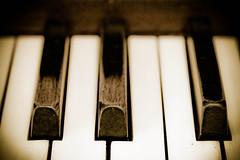 Black and white keys (HelenCE) Tags: piano ivory canoneos20d pianokeys oldpiano