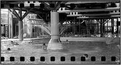 `)(´ (Ulla M.) Tags: adoxgolf63 rodinal analog mittelformat 6x6 balgenkamera sw canoscan8800f selbstentwickelt selfdeveloped freihand foldingcamera kleinbild 35mm hallenbad umphotoart analogue film filmschooter analogphotography filmphotography filmshooter