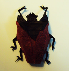 Goliath Beetle by Manuel Sirgo, folded by me (Shikigami no Mai) Tags: origami beetle manuel goliath goliathbeetle manuelsirgo sirgo goliathbeetlemanuelsirgo goliathbeetleorigami