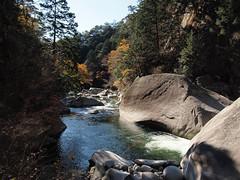 PB243750 (karst) Tags: autumn japan walk autumncolors e30 yamanashi 2011 shosenkyo autumnwalk 1122mmf2835