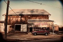 Balbac & Son (Pete Zarria) Tags: sign illinois farm feed