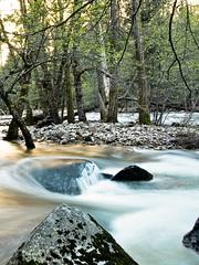 Fluss am Morgen (mografik) Tags: licht yosemite fluss morgens
