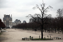 Paris in Winter: Tuileries gardens and the Louvre (R. O. Flinn) Tags: trees winter paris france gardens museum architecture louvre palace tuileries