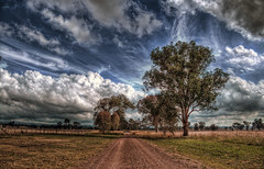 All roads lead to Greta (Indigo Skies Photography) Tags: road trees sky colour tree beautiful grass clouds rural wonderful photography scenery flickr farm australia victoria nedkelly colourful lovely hdr gravel greta paddock gravelroad glenrowan northeastvictoria nikond90 raychristy