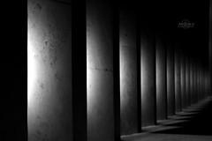 Abstract. =D (⌯ ̟՝˻ п̵м̱ọ̯͡໐яྀα ˺ ໋, ৩՞) Tags: light white black canon 50mm d 600 عربية t3i d600 qtr قطر الدوحة الدوحه دوحه ameera اسود دوحة q6r كانون ابيض amoora اميرة عربيه اموره امورة اميره qa6ar أمورة أموره دي600 600دي