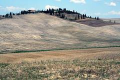 tos55 (laura.foto) Tags: italy field landscape italia wheat tuscany crete siena toscana valdorcia cretesenesi wheatfield