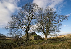 The Old Barn (GaryHowells) Tags: trees barn derelict blaenavon